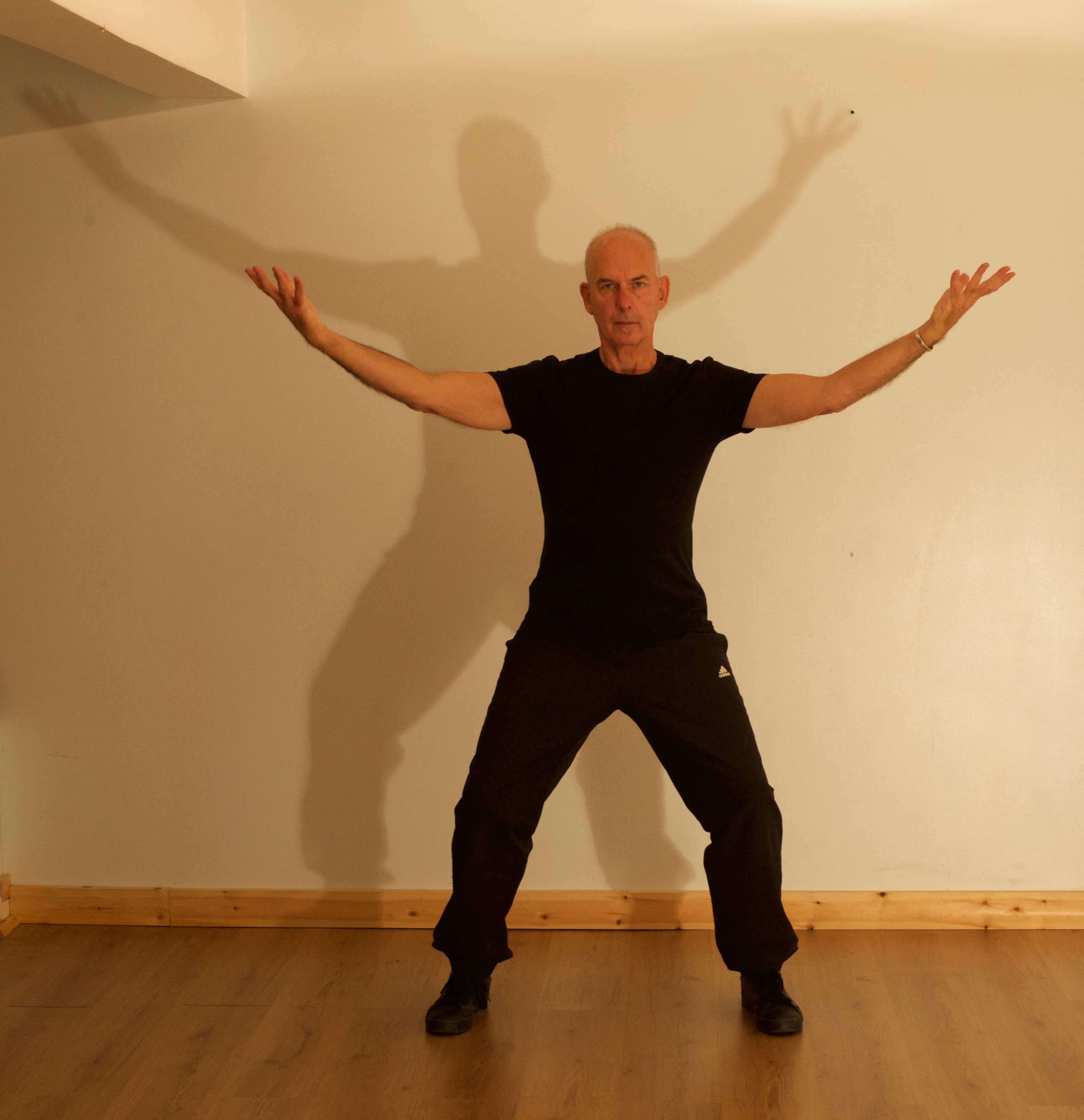 Qigong Taster Workshop